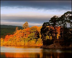 Autumnal forest and lake